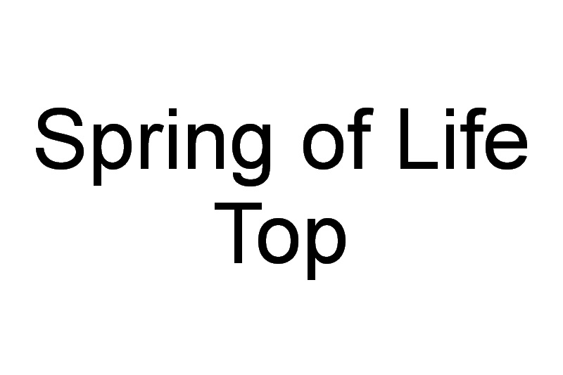 Spring of Life Top